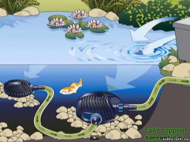 Пруд своими руками создание водоема шаг за шагом
